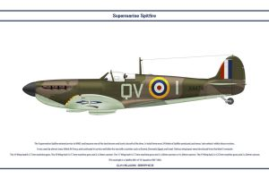 Spitfire Mk I GB 19 Sqn by WS-Clave