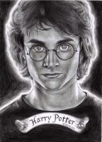 Harry Potter by rosan-mate
