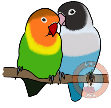 Lil' Lovebirds by MaddeMichael