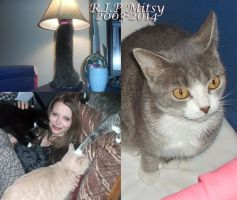 R.I.P. Mitsy by Nightfable