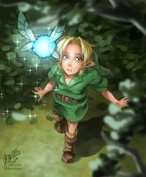 [tLoZ] The Boy without a Fairy by Edo--sama