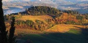 Autumn in Tuscany by frei76