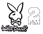 2PM Wild Bunny by Aki-likes-your-ART