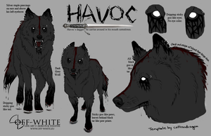Havoc Ref Sheet by Peace-Wolf