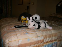 My awesome plushies by Anna-aurion