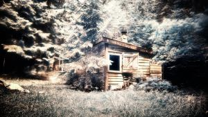the house in the green by Ditze