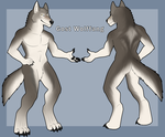 COMMISSION: Gost Wolffang Reference by Rott-i-kins