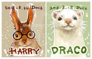 squirrel Harry ferret Draco by dorisdoris