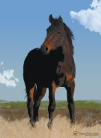 Horse in Field by Twitchy-Kitty-Studio
