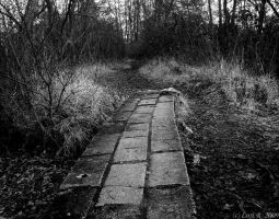 A lonely path by Gothicmama