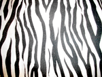 Zebra Print by MonsterGoRAWR