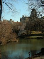 Central Park. by LateRainyNights