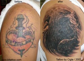 Eagle cover up by cigla