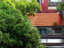 Red Roof by drsouvikkumar