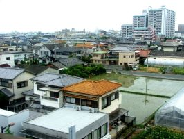 Japan fotographed from the train by shiko6