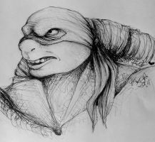 Just another Raph pen sketch by OfasJakunin