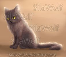 A Little Kitty by SilaWolf