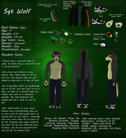 Sgt Wolf Character Sheet by pikminpedia