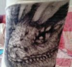 Dragon head on the plaster... by Fly-Sky-High