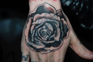 Rose cover up in progress by batty-boy