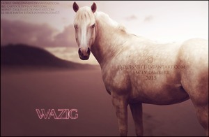 Wazig by ExquisArt