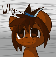 But Why by GlitterBell
