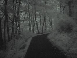 Dark path by glistam