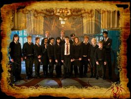 Dumbledore's Army by Manre