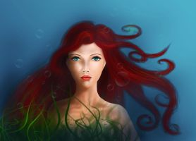 Ariel by annaluci