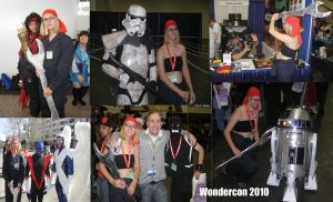 Wondercon 2010 Collage 2 by ShellMinded