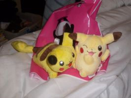 Two new cute Pikachu Plushies by MarioBlade64