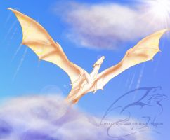 Soaring High by Nalusa