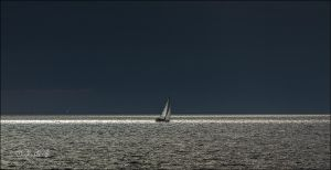 Light Sailing by BFGL