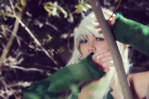 Queen's Blade Cosplay (Alleyne) by 8bitsilver