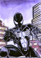 Black Spidey 3 Sketch Card by shinlyle