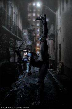 Nightwing by Tr3ster