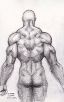 Male Back Study 4-25-2013 by myconius