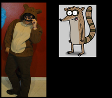 Comparison: Rigby by InvaderSonicMx