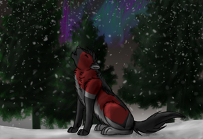 Howl by DragonsPainter