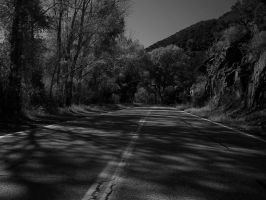 New Mexico Canyon gray-scale by Barn0wl
