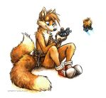 Tails by kenket