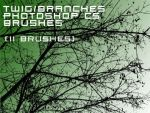 Branches brushes by Hermit-stock