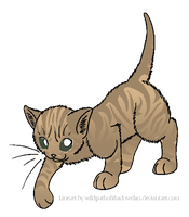 RiverClan Tabby 'Colored' by kawaiipikachu12