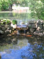 Koi Pond : 01 by taeliac-stock