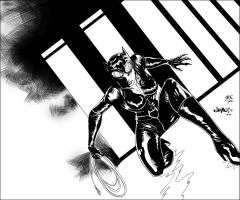Catwoman By Jimbo.S. by JDB-Inks