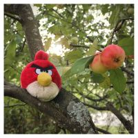 Angry Bird by Pajunen