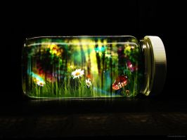 LIFE IN A JAR? by Viscocent