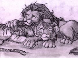 Lion and Tiger by bidujador