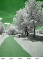 Infrared Stock - 2013 - 48 by ElaineSeleneStock