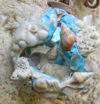 Caribbean Tidal Pool Necklace by Pandidiggy